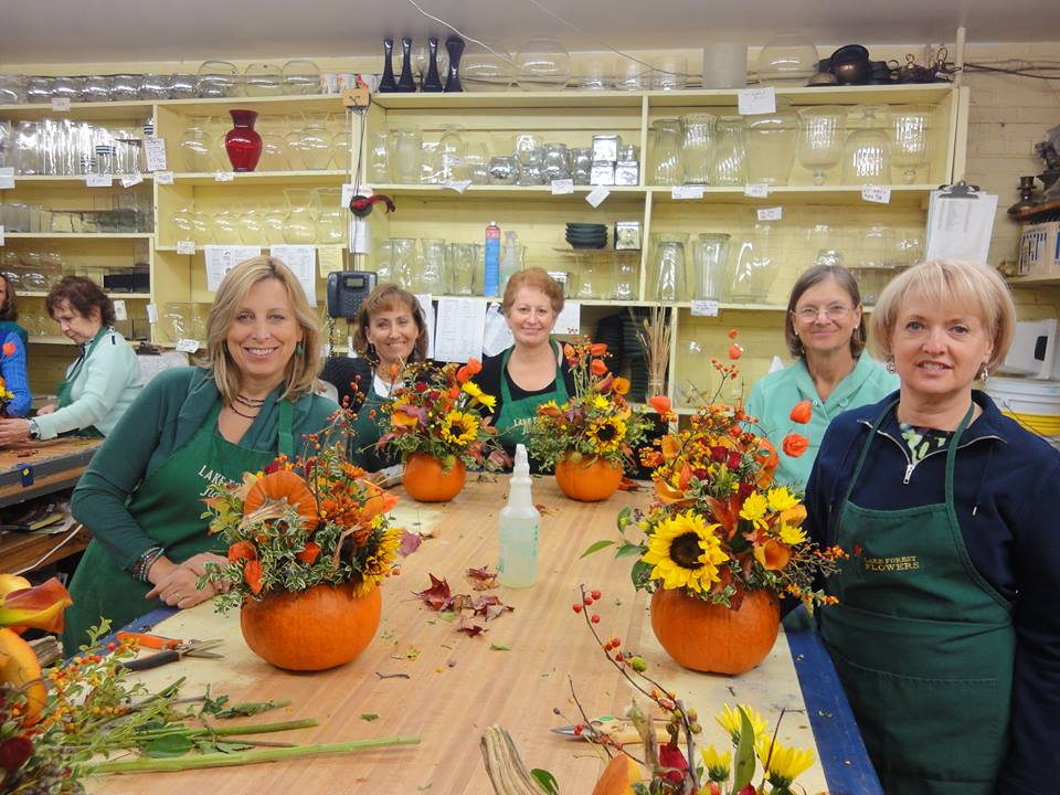 Designing with pumpkins & gourds