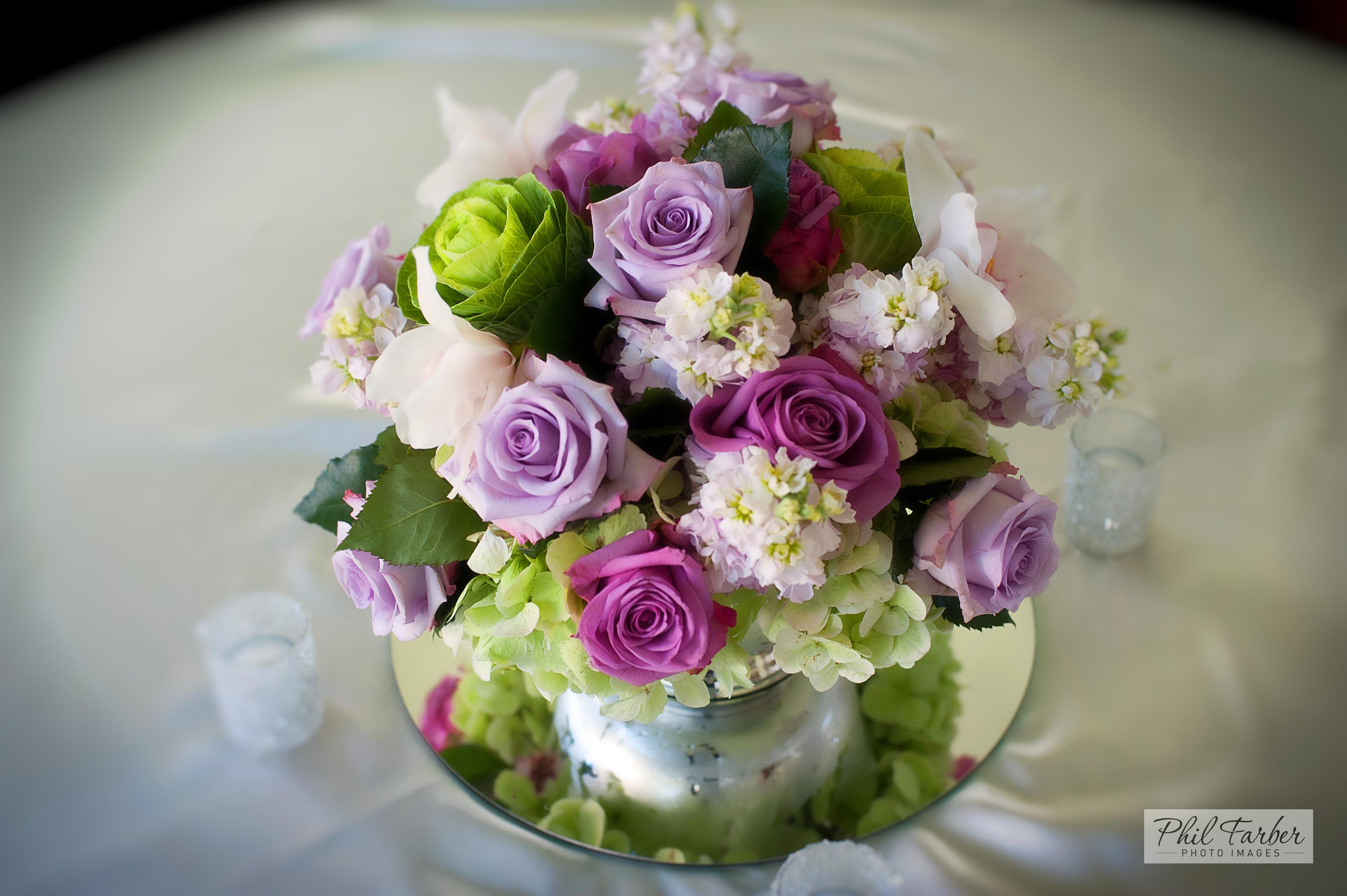 roses, hydrangea & more
