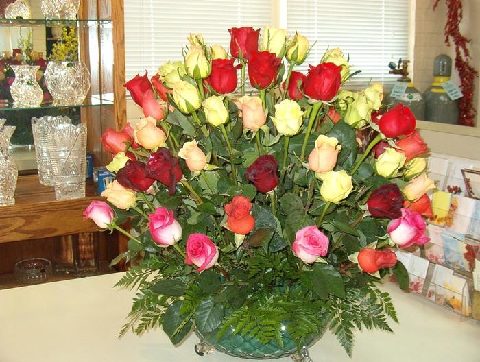 100+ roses